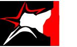 Star Technologies Logo